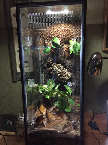 20 Gallon LONG or 29 Gallon Aquarium Gecko/Arboreal Conversion Kit