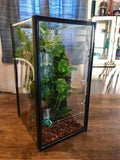 10 Gallon VERTICAL Aquarium Gecko/Arboreal Conversion Kit