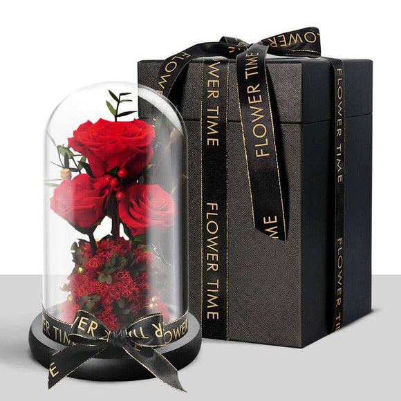 Preserved Rose Flower In Glass Dome - Funy Flower