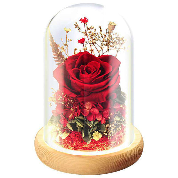 Preserved Rose In Glass Dome Luxry Anniversary Gifts For Her - Funy Flower