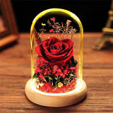 Preserved Rose In Glass Dome Luxry Anniversary Gifts For Her - funyflower