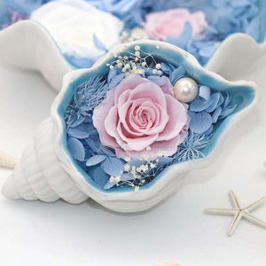 Preserved Rose Flower In Shell Conch | Special Gift For Women - funyflower