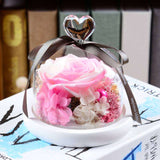 Real flowers preserved in glass dome - Funy Flower