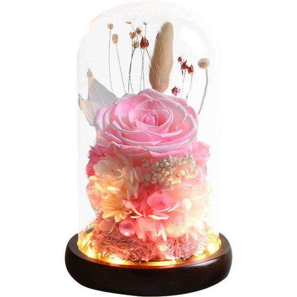 Preserved Rose Flower Gift In Glass Dome - Funy Flower