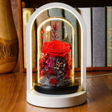 Preserved Rose Flower In Whirling Glass Dome With Led Lights - Funy Flower