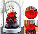 Preserved Rose Flower In Whirling Glass Dome With Led Lights - funyflower