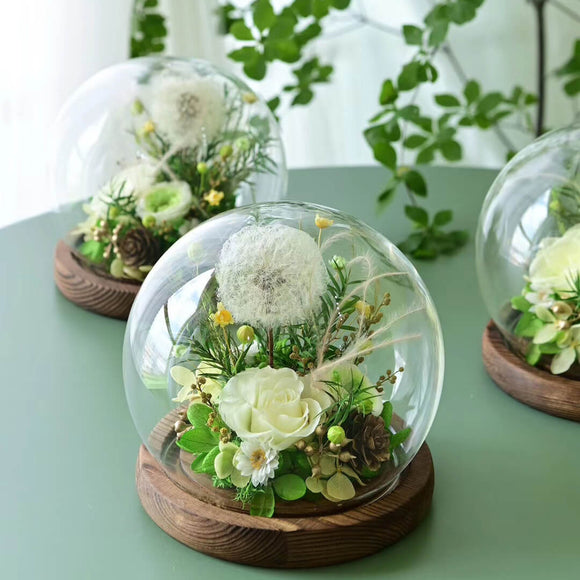 Everlasting rose in glass dome - funyflower