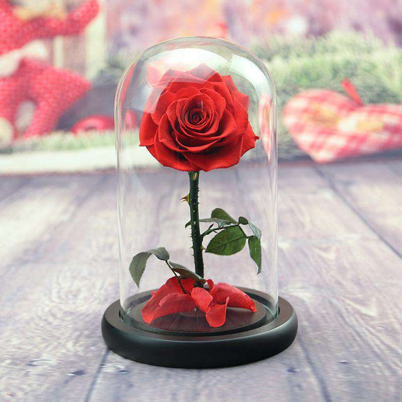 Handmade Preserved Flower Rose in Luxury Glass Dome - Funy Flower