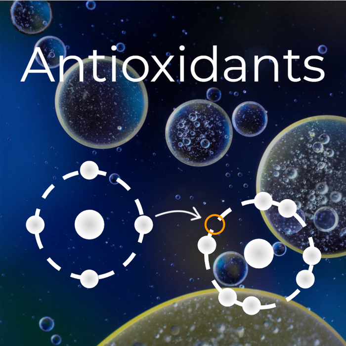 Ingredient Spotlight: Antioxidants