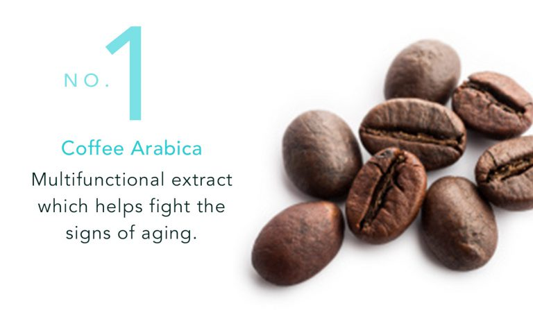 Coffee Arabica - Multifunctional extract which helps fights the sign of aging
