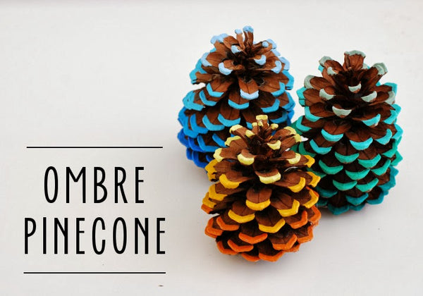 Ombre colored pinecones. Fall Decor. Great for Thanksgiving. Fall DIY. Link found at socialcrafts.com #falldecor #diyfalldecor #thanksgivingdecor #easydiy #thanksgivingdiy #pinecones #pineconedecor #ombre #ombrepinecone