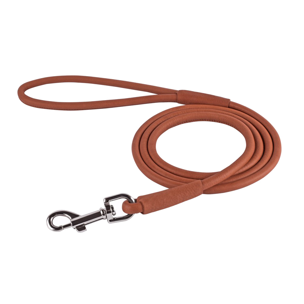 Rolled Leather Harness - Brown