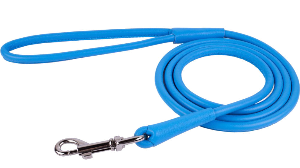 Rolled Leather Leash - Blue