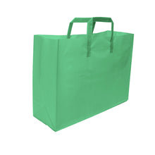 "Soft Loop Handle Frosted Bag - 16"" x 12"" x 6"""