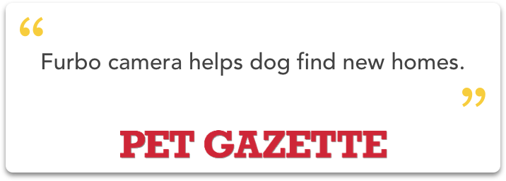 pet-gazette