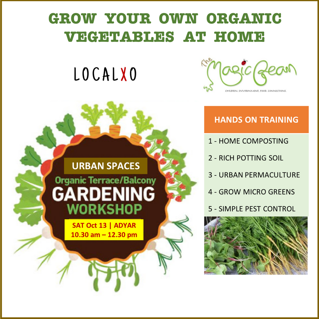 Food growing in Urban spaces: Hands-on organic gardening workshop