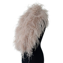Blush ISKRA Ostrich Feather Collar