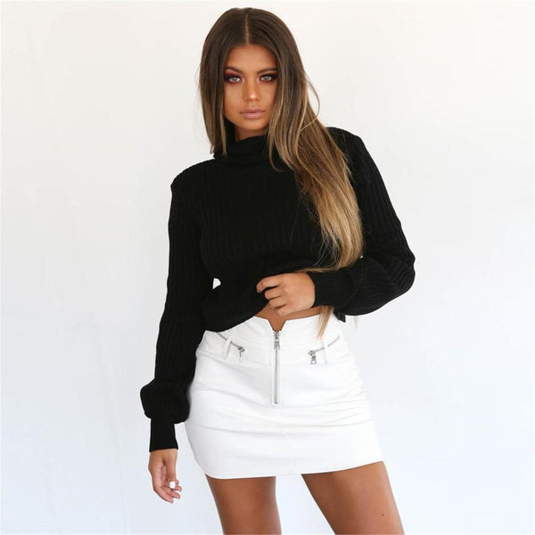 Turtleneck Knitted Crop Sweater