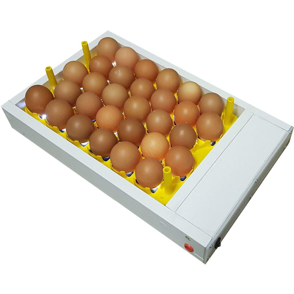 Egg Fertility Tester (Egg Candler) for 30 Chicken Eggs - SureView - Surehatch Incubators