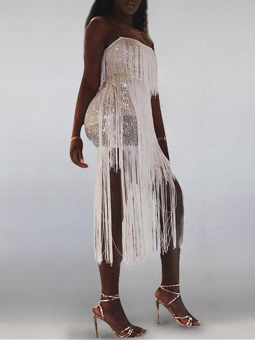 Sequin Fringe Combo Dress