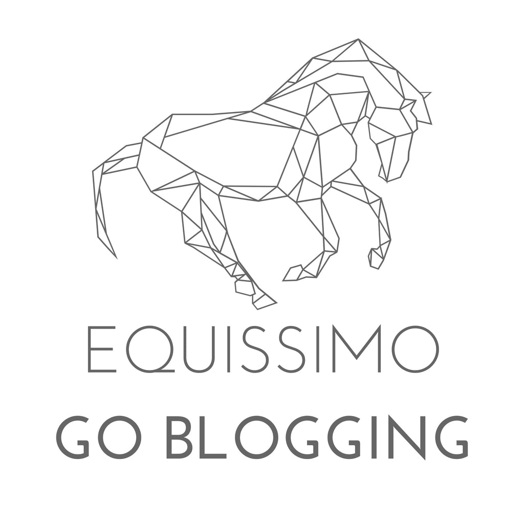 Blogs and Blogs