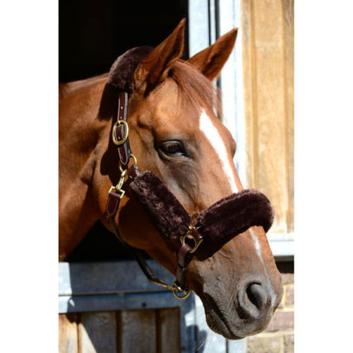 Kentucky Horsewear 4 Piece Sheepskin Headcollar set