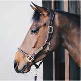 Kentucky Horsewear Anatomic leather headcollar