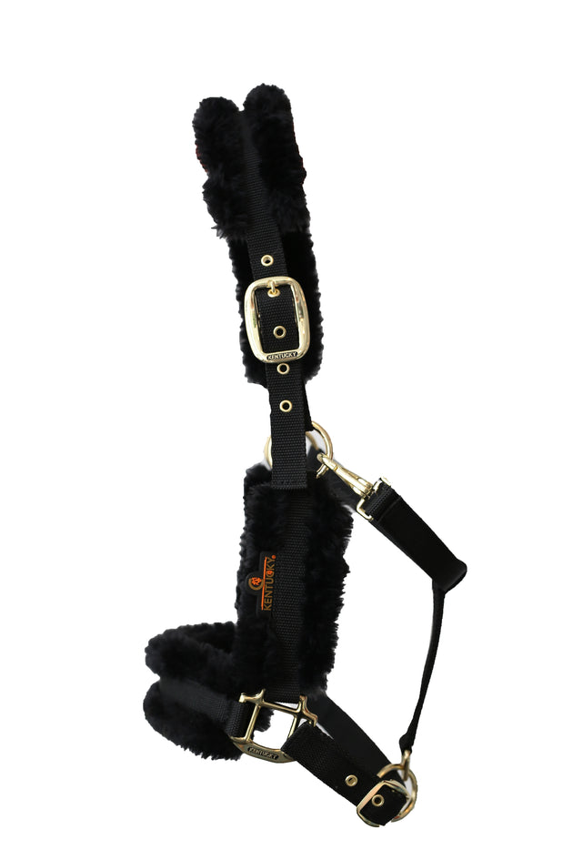 Kentucky horsewear sheepskin headcollar black from Equissimo