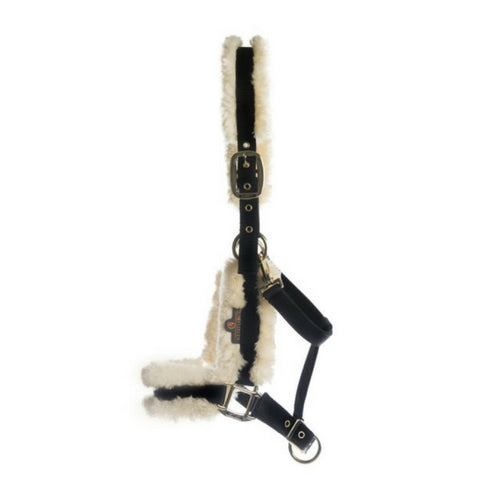 Kentucky horsewear sheepskin headcollar natural from Equissimo
