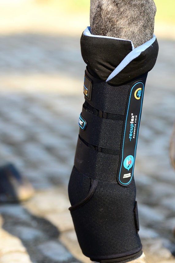 Kentucky Horsewear Magnetic Stable Boots Recuptex Equissimo