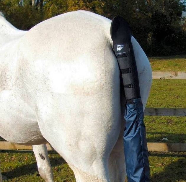 New Equine Wear tailguard