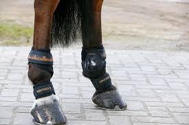 Kentucky Horsewear Pastern Wrap. Free UK Delivery