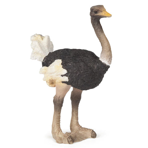 Papo Ostrich 50073 Papo Retiring 2019 Papo nz Papo Retired Animal Kingdoms nz