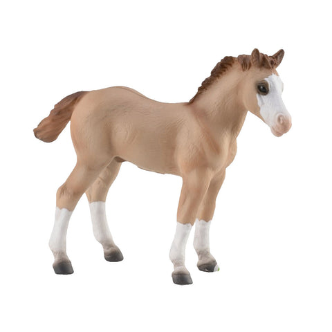 CollectA Quarter Foal - Red Dun 88814 New Release 2018