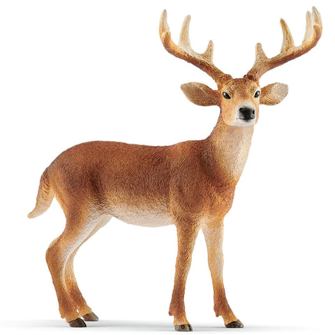 Schleich White-tailed Deer 14818 Schleich 2019 New Release 2019