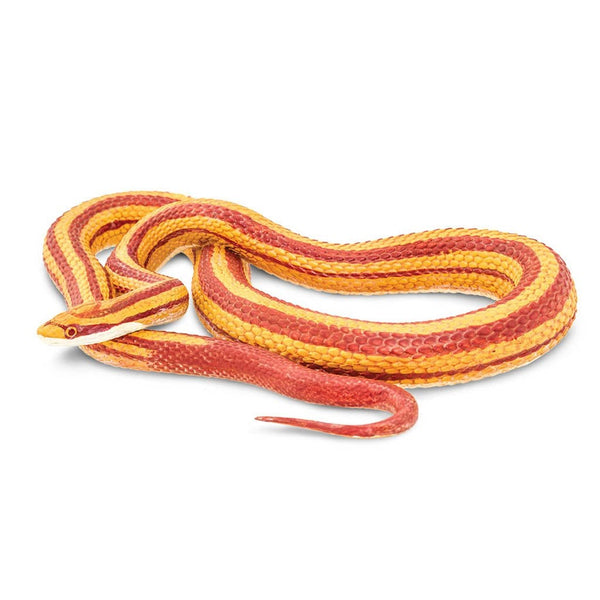 Safari Ltd Corn Snake - large-SAF100073-Animal Kingdoms Toy Store