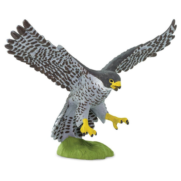 Safari Ltd Peregrine Falcon - AnimalKingdoms.co.nz