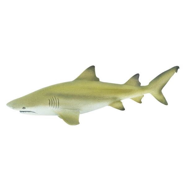 Safari Ltd Lemon Shark-SAF100097-Animal Kingdoms Toy Store