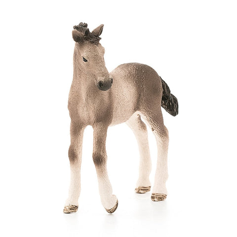 Schleich Andalusian Foal - AnimalKingdoms.co.nz