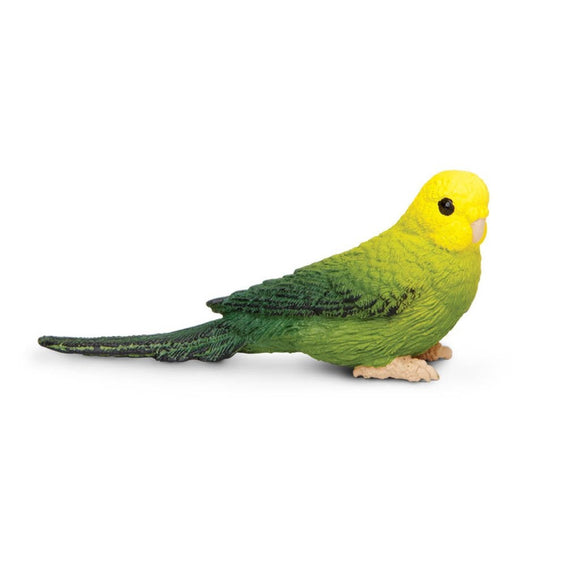 Safari Ltd Green Budgie - AnimalKingdoms.co.nz