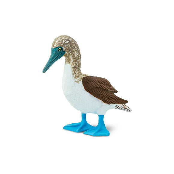 Safari Ltd Blue Footed Booby - AnimalKingdoms.co.nz