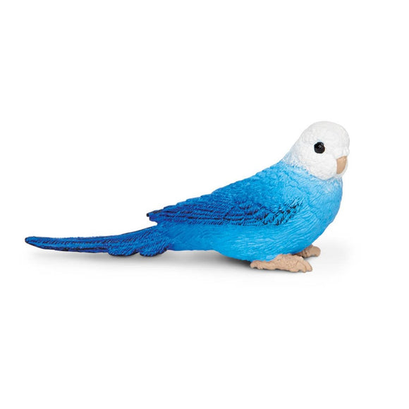 Safari Ltd Blue Budgie - AnimalKingdoms.co.nz