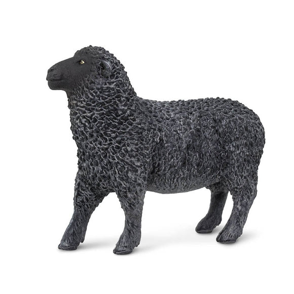 Safari Ltd Black Sheep-SAF162229-Animal Kingdoms Toy Store