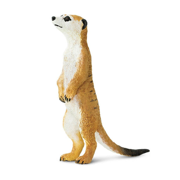 Safari Ltd Meerkat-SAF224629-Animal Kingdoms Toy Store