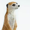 Safari Ltd Meerkat - AnimalKingdoms.co.nz
