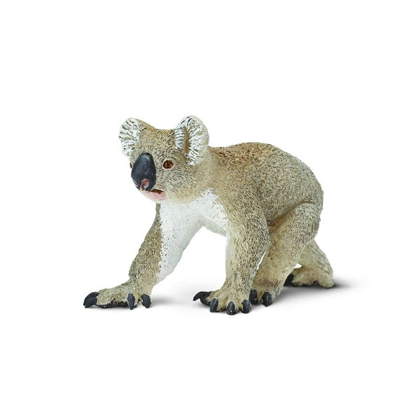 Safari Ltd Koala-SAF225329-Animal Kingdoms Toy Store