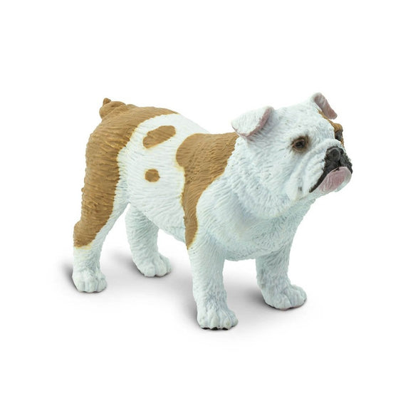 Safari Ltd Bulldog-SAF250729-Animal Kingdoms Toy Store