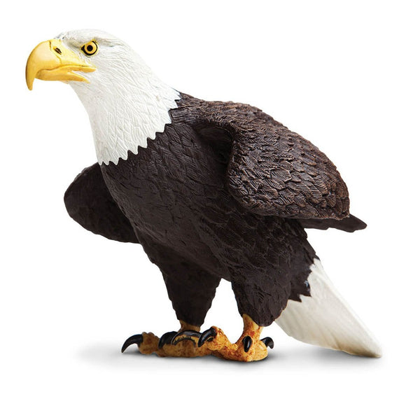 Safari Ltd Bald Eagle - large-SAF251029-Animal Kingdoms Toy Store