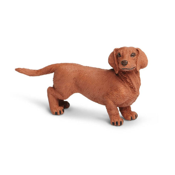 Safari Ltd Dachshund-SAF251529-Animal Kingdoms Toy Store