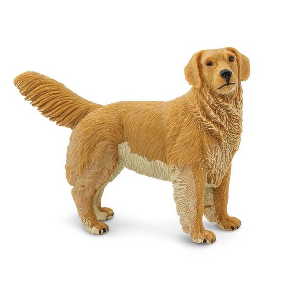Safari Ltd Golden Retriever-SAF253129-Animal Kingdoms Toy Store